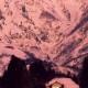 2001年奨励賞 【霊山夕照】 佐野善紀さん 撮影地:新潟県南魚沼市(六日町)