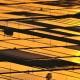 2009年優秀賞 【黄金の五月田】 近藤武夫さん 撮影地:新潟県五泉市小山田
