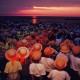 1994年大賞 【落陽の浜】 平田一幸さん 撮影地:新潟県上越市大潟区